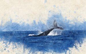 クジラです