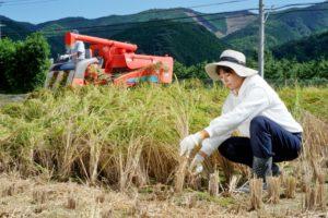 農業です。