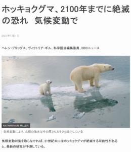 ホッキョクグマが気候変動で絶滅の危機