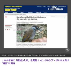 ボルネオ島で絶滅した鳥が発見される