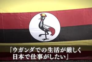 ウガンダでの生活が厳しく 日本で働きたい