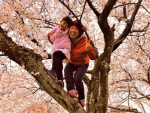 桜と家族です