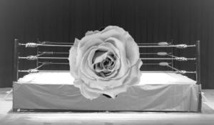 プロレスリングと花