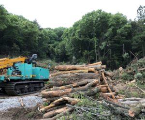 森林伐採です