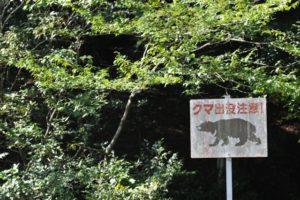クマの看板です