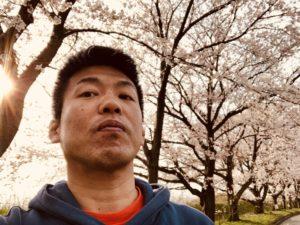 出見世と桜です